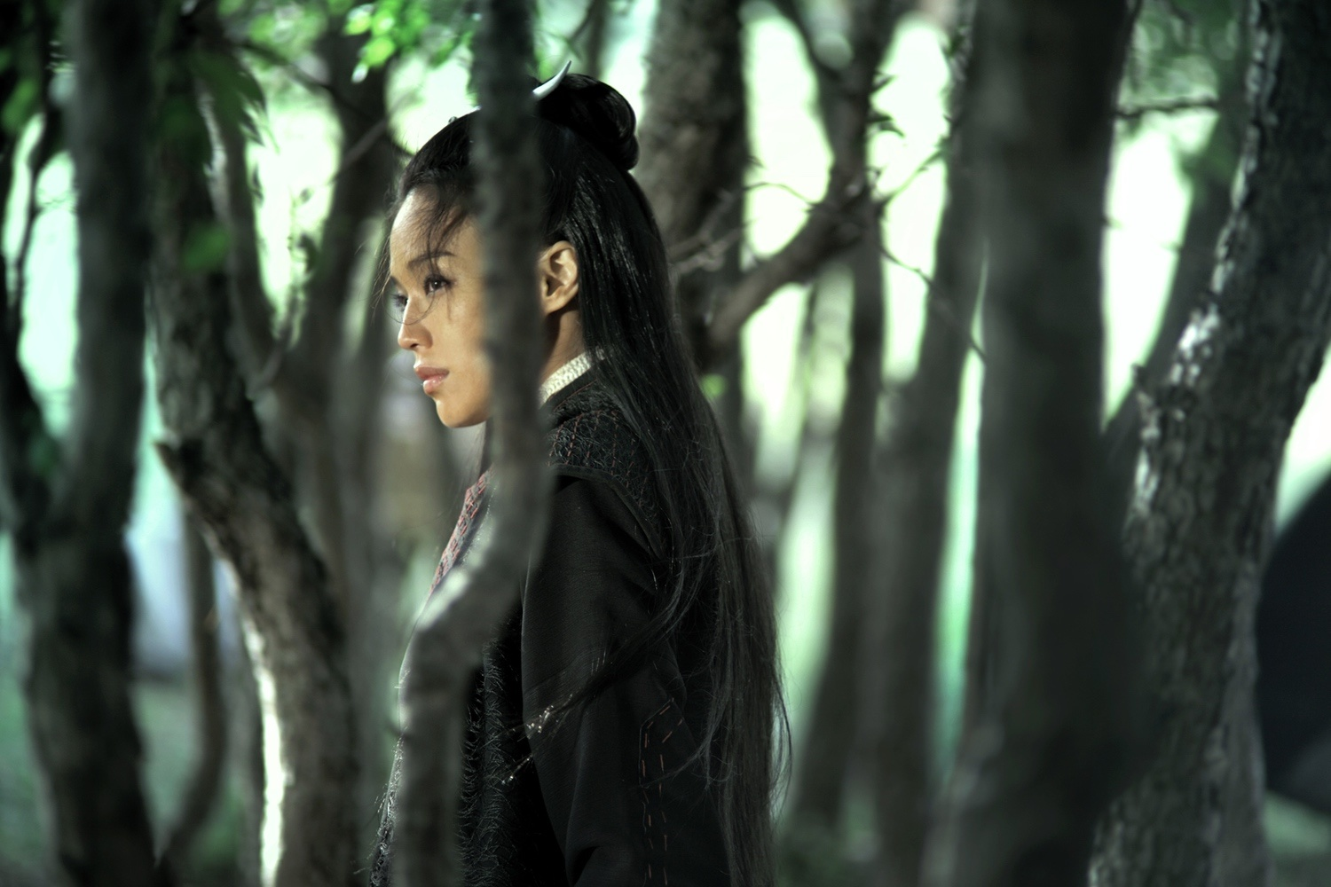Wuxia Meets Art House Cinema in The Assassin