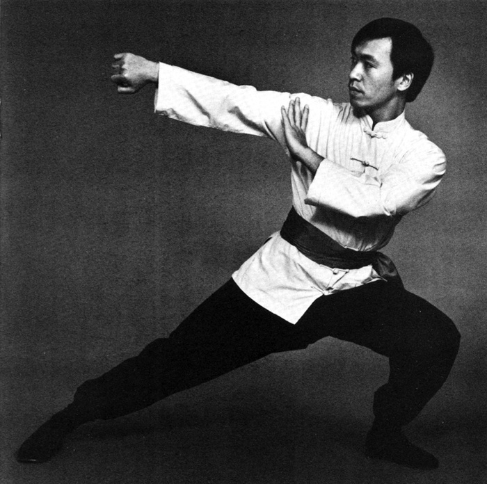 Image result for martial artist